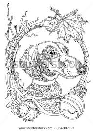 Dachshund Coloring Pages Color Bros