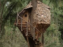 pete nelson s tree houses. Plain Pete One Program That Has Been Successful Stayed True To Reality TV And Centers  Around Projects Is U0027Treehouse Mastersu0027 On Animal Planet With Pete Nelson S Tree Houses E