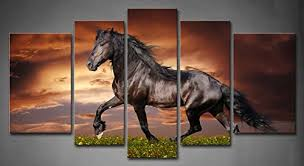 amazon 5 panel wall art black friesian running horse trot on the field on sunset grass and flower painting pictures print on canvas animal the picture  on wall art pictures of horses with amazon 5 panel wall art black friesian running horse trot on
