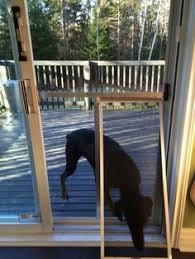 diy dog doors. Screen Door For Large Dog (diy) Diy Doors