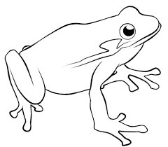 Coloring Pages : Froggy Coloring Pages F Is For Frog 11 Page Png ...