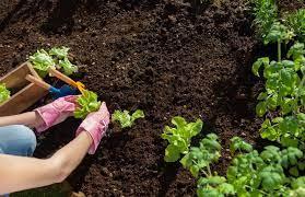 top soil calculator calculate the