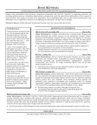 It Professional Resume Professional Resume Examples Sales | jobsxs.com