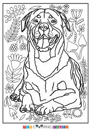 Small Picture Rottweiler Coloring Page Hera ZileArt