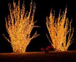 decorative landscape lighting. use decorative lighting for outdoor parties to illuminate the festivities. landscape