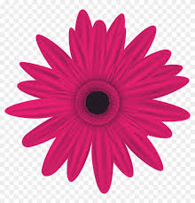 flower clip art png image is available for free orange flowers clip art