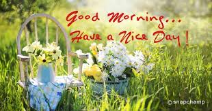 Good Morning Have A Nice Day Quotes Best of Good Morning Have A Nice Day Quotes