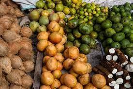 アフリカ マンゴ ノキ 副作用 コウカ ない