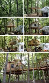 Our Classroom In The Trees U2013 Building The Barrier Free Treehouse Treehouse Masters Free Episodes