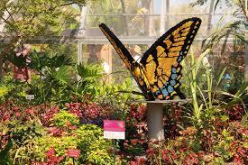 naples botanical garden ii lego erfly