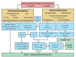 Management Of Anaemia In Patients With Chf Gm