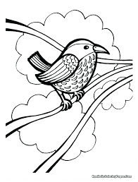 Printable Realistic Bird Coloring Pages Baby Marvelous Birds Tunes