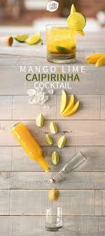 ideas about caipirinha drink vodka cocktails 3 caipirinha drink recipes
