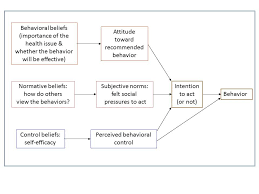 concepts behavior change diagram of the theory of reasoned action