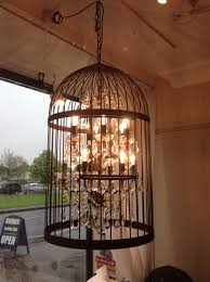 bird cage chandelier light