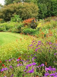 Fall Gardening Tips  Landsburg Landscape NurseryFall Gardening