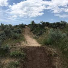 No foul play is suspected': Cause, manner of death unknown for 51-year-old  man found in Eagle park | Local News | idahopress.com