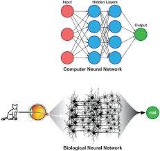 Deep Neural Network Deep Learning In Neuroradiology American Journal Of