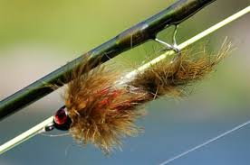 Streamer Fly Patterns