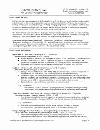 Web Design Manager Sample Resume Fresh Project Manager Cv Template