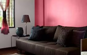 Tractor Emulsion Interior Wall Paints That Always Impress
