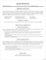 Resume Trainer Resume Examples Database Template Personal