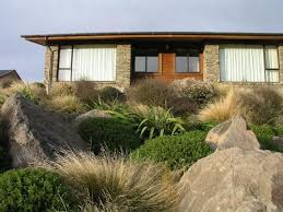 outdoor living landscapes nz. image result for native planting landscape cedar house nz outdoor living landscapes