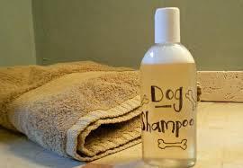 dog homemade shampoo