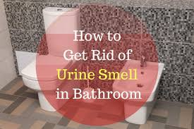 How To Get Urine Smell Out Of Bathroom New Design Ideas