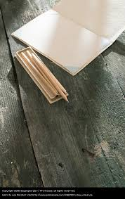vine pencil and drawing paper old white wood art brown design open creativity table
