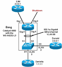 configuration and overview of the router module for the catalyst    network diagram