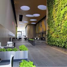Biophilic Design In The Workplace Biophilic Workplace Design Plants Wellness And Germs