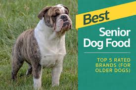 Best dog food for mature dog