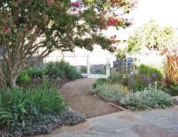 brown native garden northcote