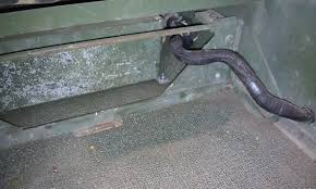 g503 military vehicle message forums • view topic 4l80 e conversion now onto the wiring here s my harness it s all built off of a tcm connector stub that had about a foot of wires on it i loosely ran the wires to estimate