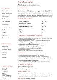 Examples Of Marketing Resumes Digital Marketing Resume Tyneandweartravel Info