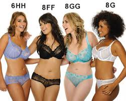 size g breast pictures 10 common myths ruun co nz offline buy sports bras best