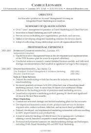 Professional Summary For Resume Inspiration Summary On A Resume Example Resume Summary Example Objective