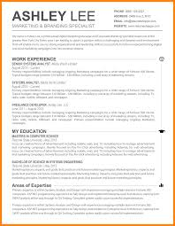 Fantastic Best Resume Practices Photos Entry Level Resume