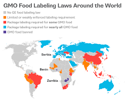 newsela issue overview gmos and engineered food the biggest developers of gmos also sell most of the world s commercial seeds they are led by monsanto which controls 27 percent of the market