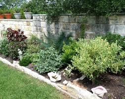 Landscape Design San Antonio Texas Low Maintenance Landscaping Ideas Texas Central Texas