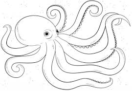 Small Picture Cartoon Octopus coloring page Free Printable Coloring Pages