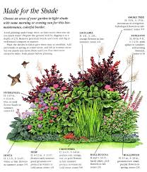 Small Picture Ideas for an Easy Care Shady Border Pinteres