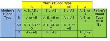 Blood Type Offspring Chart Parents Blood Type Child Chart Bedowntowndaytona Com