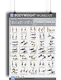 bodyweight exercise poster total body fitness laminated home gym workout poster bodyweight