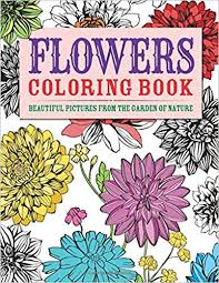 coloring book flower. Delighful Coloring Amazoncom Flowers Coloring Book Beautiful Pictures From The Garden Of  Nature Chartwell Books 0039864030410 Patience Coster Books Intended Book Flower U