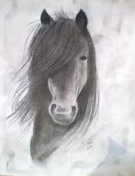 horses drawings. Simple Horses Horses Drawings  Google Search With Horses Drawings O