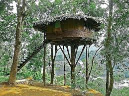 tree house decorating ideas. Kids Tree House Designs And Plans For New Home Small Cool Houses Decoration Ideas Living Room . Decorating