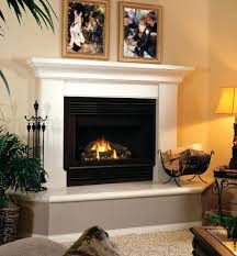 ... Gas Fireplace Decorative Fronts Stones Outdoor Images ...