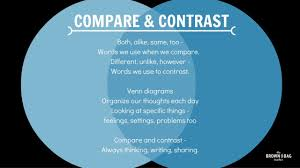 comparison contrast essay wolmer s boys school english department
